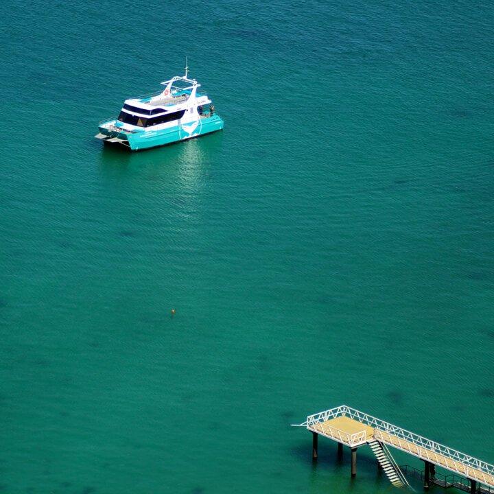 Baia-dos-Golfinhos