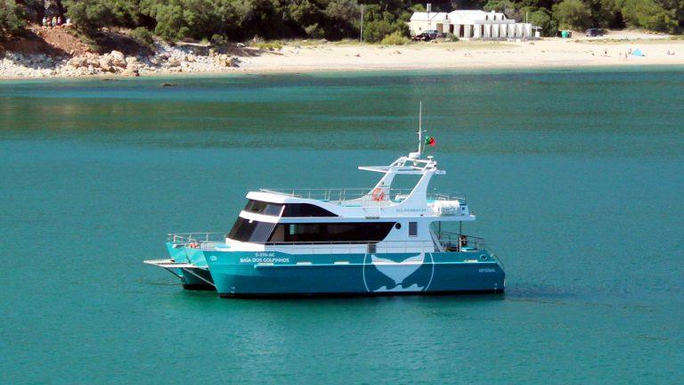 """""""Baía dos golfinhos"""" Catamaran"""